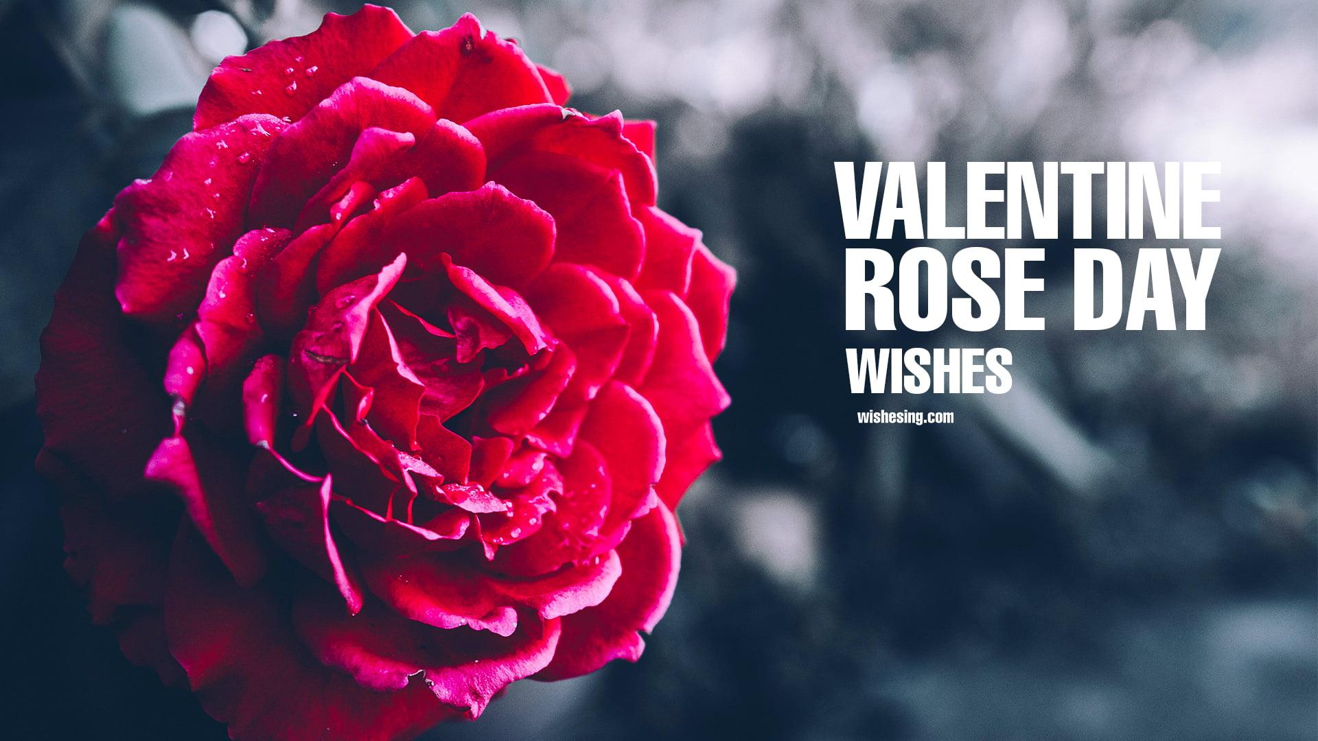 happy-rose-day-2021