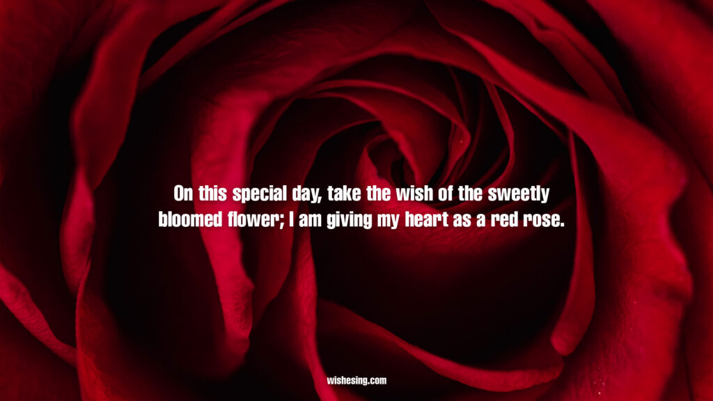 Happy Rose Day 2021 Quotes, Wishes, Messages With Rose Day Images